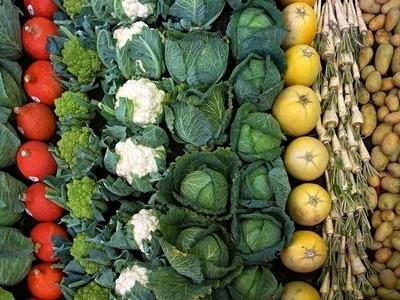 ГИБРИД И ГМО — РАЗНИЦА?